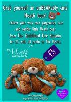Final-Bear-Poster
