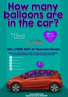 Guess-how-many-balloons-are-in-the-car