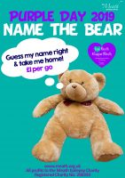 Guess-the-Bear
