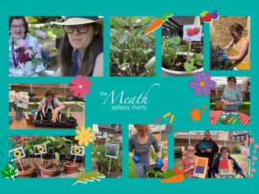 Meath-gardening