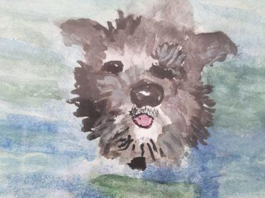 Splashing Dog, by Mel
